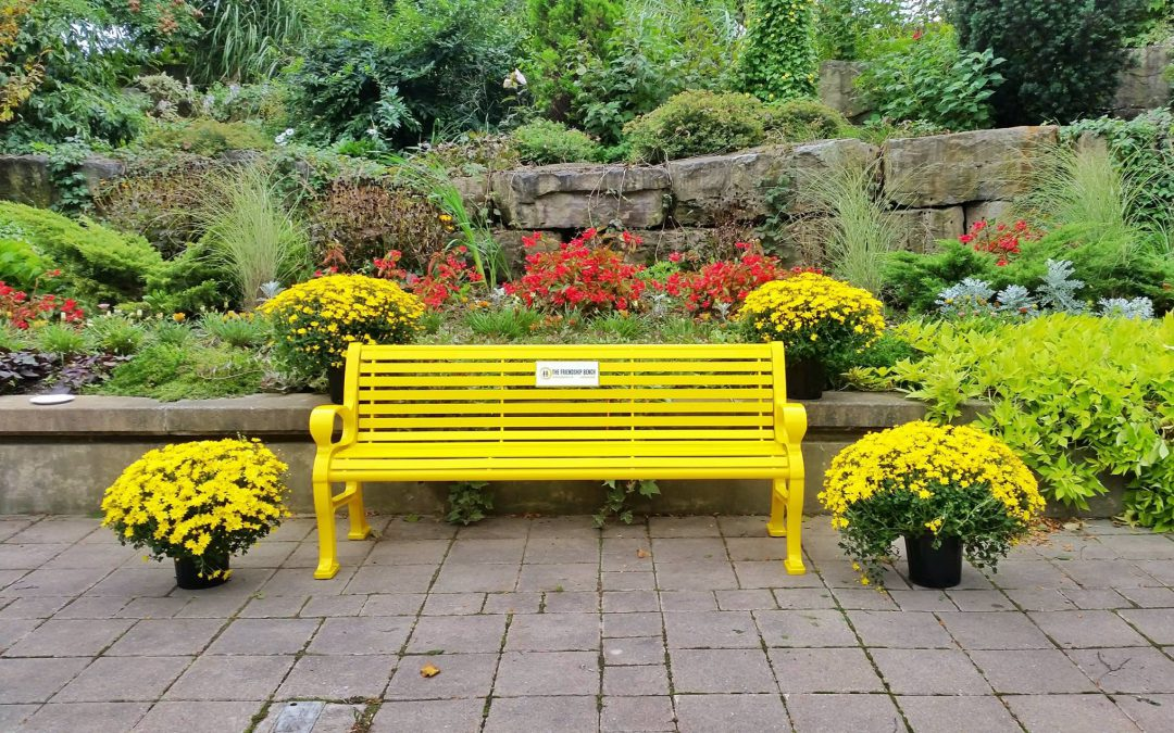 Friendship Bench Dedicated to First Ontario College, Niagara College